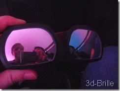 3d Brille_Miraikan_Planetarium_SAM_3011