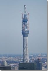 Ne Tokyo Tower IMG_0211_x1000