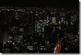 110201 - Tokyo Haeusermeer_MG_2726