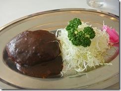 110205 - Japanischer Hamburger SAM_3348