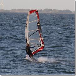 Surfer_IMG_0383_1000x
