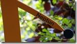 8 - Neptun, IMG_4508
