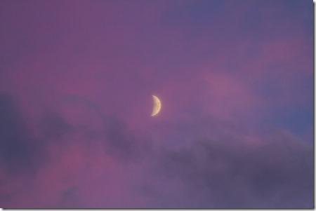 Mond in rosa Wolken-7879